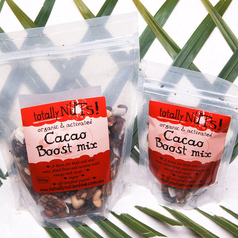 Cacao Boost Mix | Shop Paleo Activated Organic Nuts and Butters