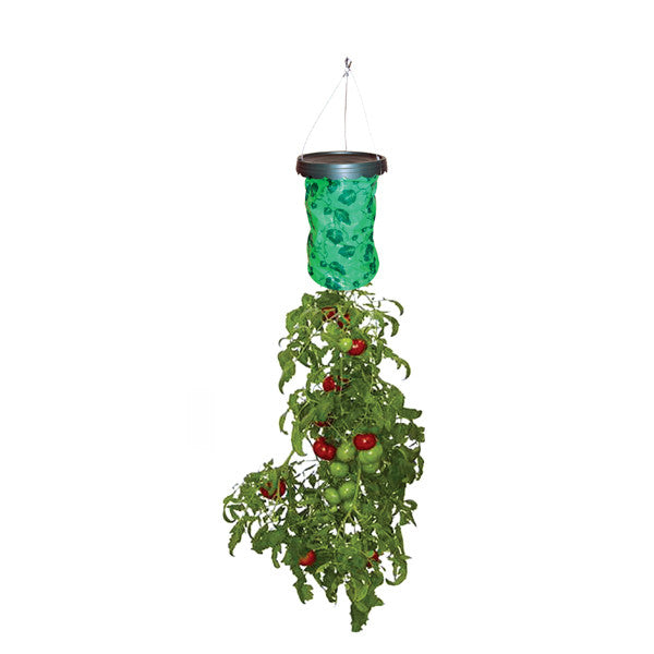 Tomato and herb planter bag and hanging attachment (seeds and soil not included)