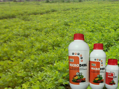 Importance of Chelated Micronutrients in Modern Agriculture