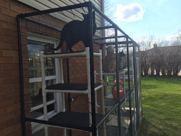 Outdoor Pvc Catio For Cat Play Amp Protection Formufit