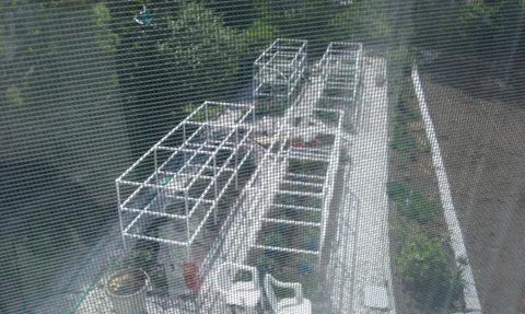 Tomato Plant Cages