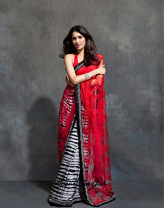 Half & Half Embroidered Net Saree