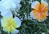 Floating Flower Candles. Floating Candle Centerpiece. Scented Candle. Floating Candles Wedding. Plumeria Flower 10 pieces/pack Available in Yellow and Assorted Colors