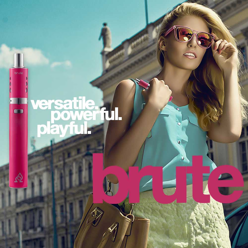 brute with smart lady