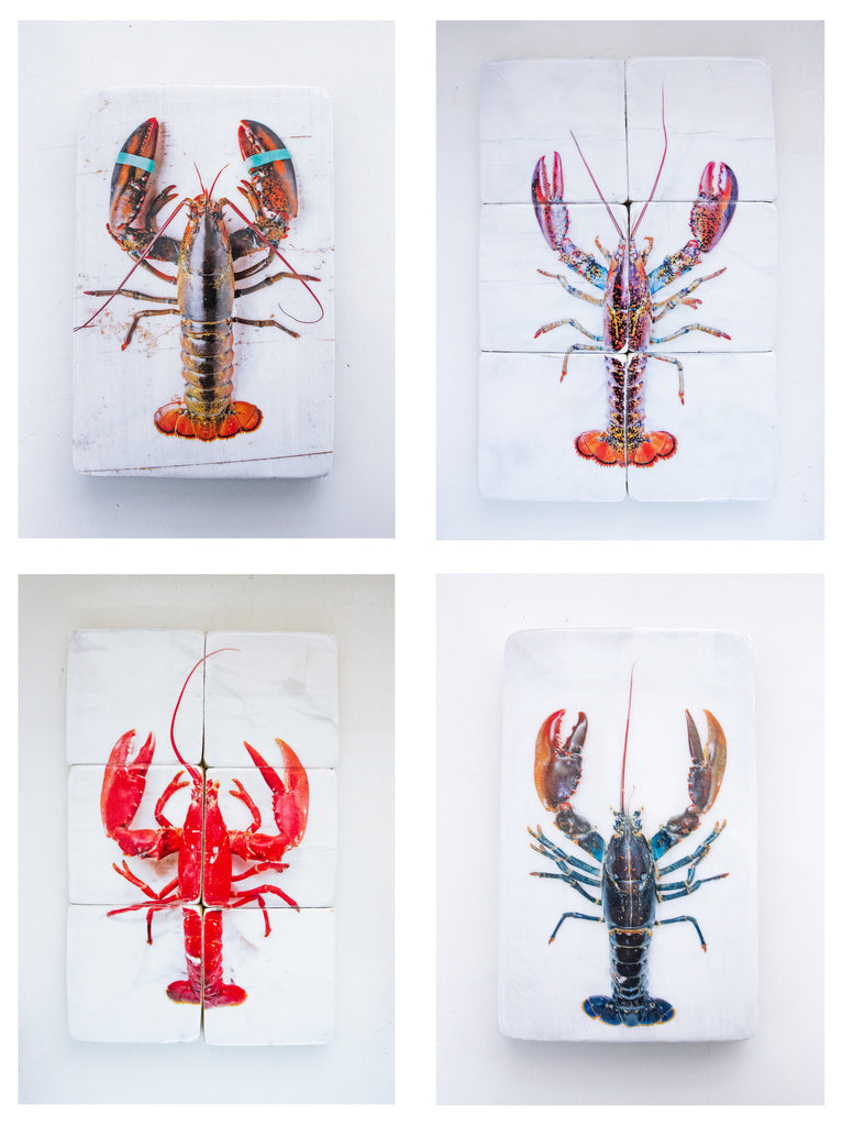 NEW in the collection, Lobsters!!