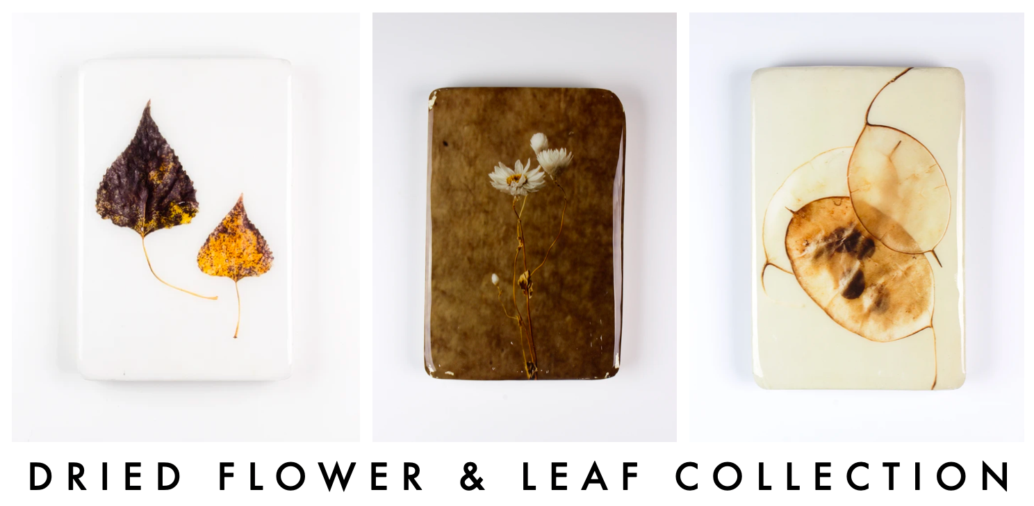 Dried flower & leaf collection