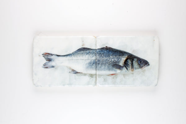 Blue sea bass (48cm x 20cm)