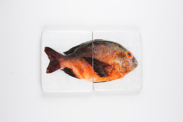 Brown orange Balinese fish (40cm x 24cm)