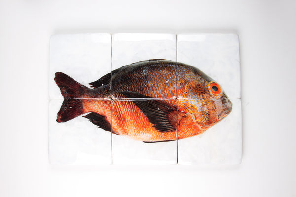 Brown orange Balinese fish (60cm x 40cm)