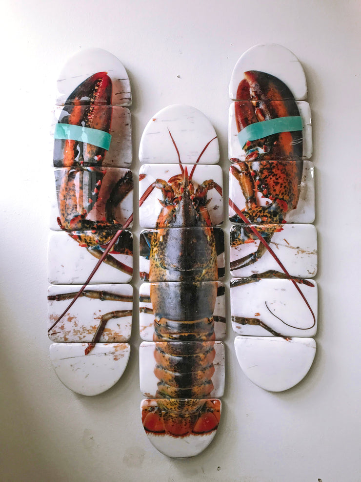 Canner lobster skateboard decks