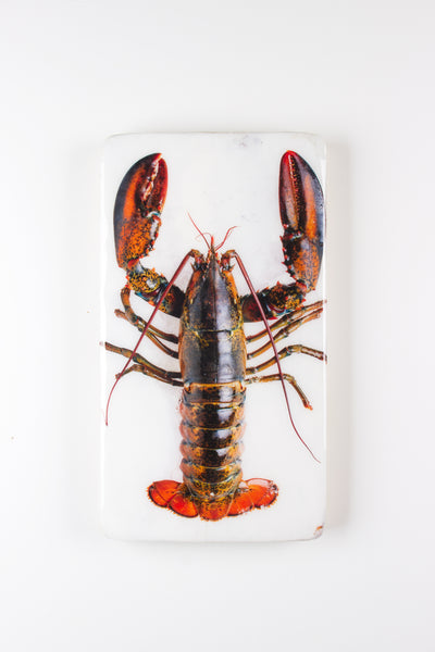 Canner lobster on ice (20cm x 35cm)