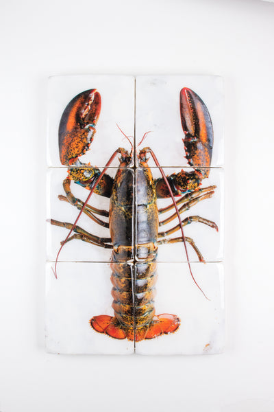 Canner lobster on ice (40cm x 60cm)