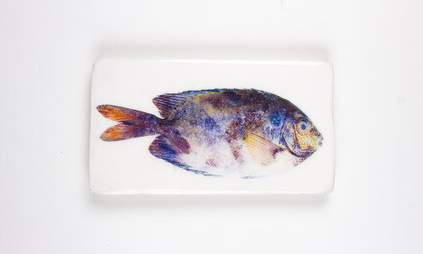 Coloured dotted Balinese fish (35cm x 20cm)