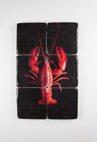 Cooked canner lobster on black (40cm x 60cm)