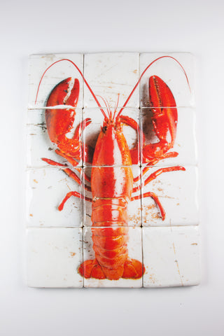 Cooked canner lobster on white (60cm x 80cm)