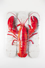 Cooked canner lobster on white decks (60cm x 80cm)