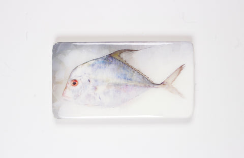 Diamond trevally (35cm x20cm)