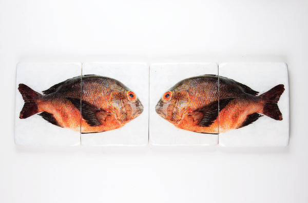 Double brown orange Balinese fish (80cm x 24cm)