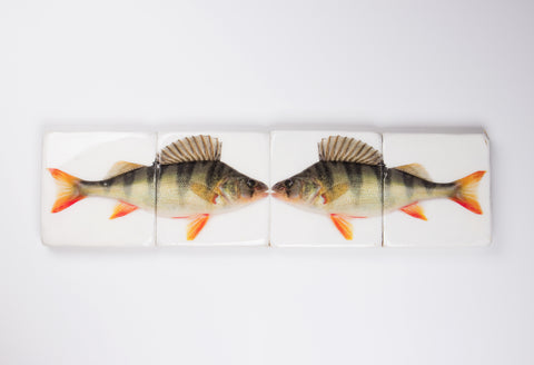 Double fresh water bass (80cm x 20cm)