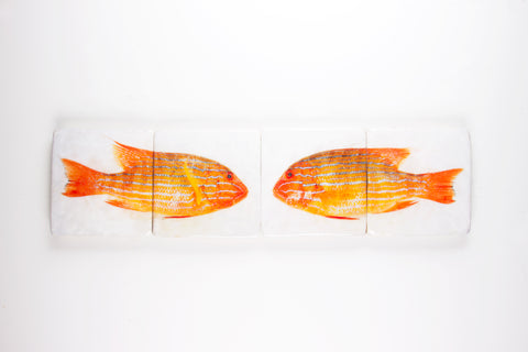 Double orange sweetlips (80cm x 20cm)