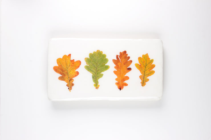 Four oak leaves (35cm x 20cm)