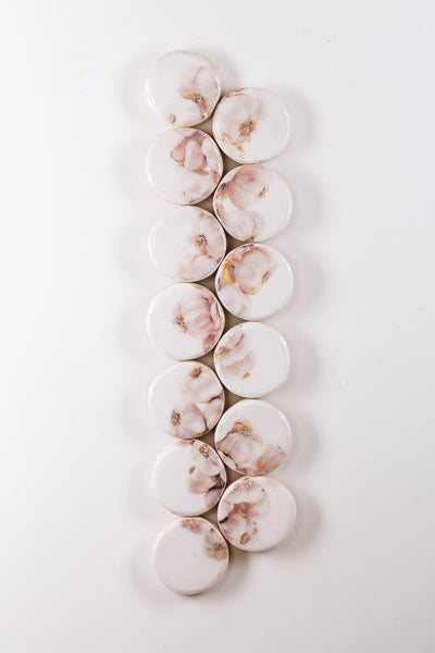 Garlic string in small circles (30cm x 105cm)