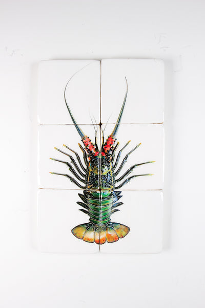 Green spiny lobster (40cm x 60cm)