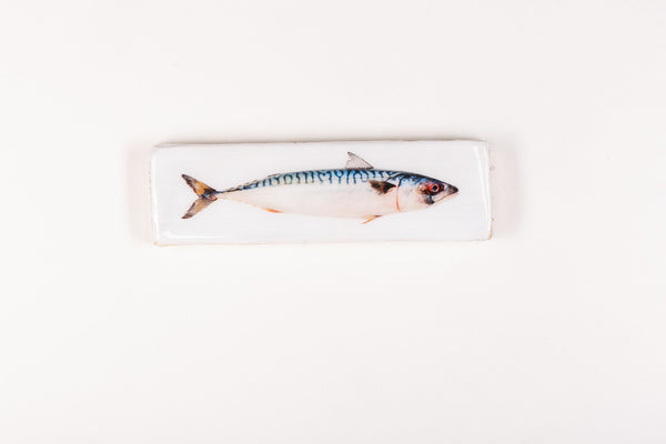 Coloured mackerel (40cm x 13cm)
