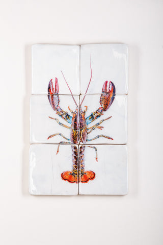 Canner lobster (40cm x 60cm)