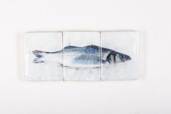 Blue sea bass (60cm x 25cm)