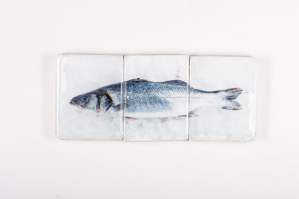 Blue sea bass (60cm x 24cm)
