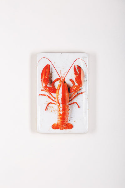 Cooked canner lobster on white (20cm x 29cm)