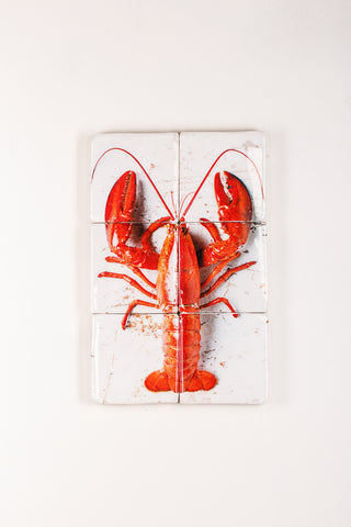 Cooked canner lobster on white (40cm x 60cm)