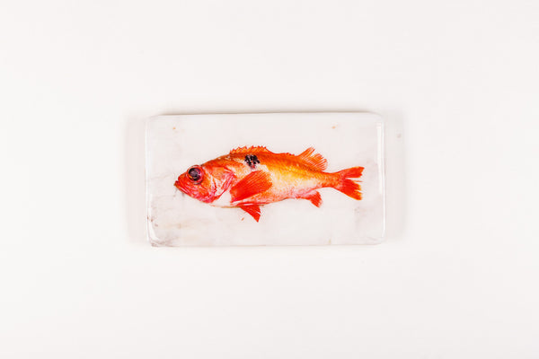 Red fish (35cm x 20cm)