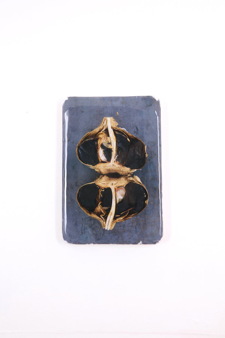 Two black garlic (20cm x 29cm)