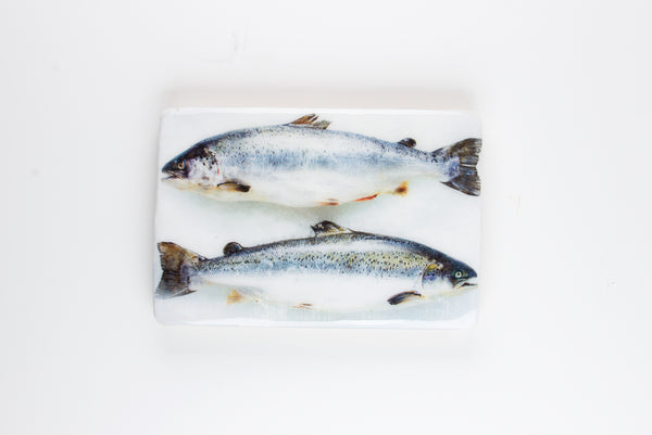Two scottish salmon (29cm x 20cm)