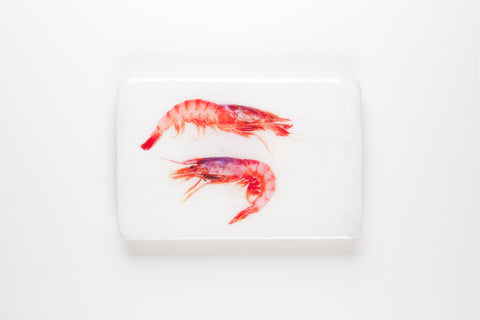 Two spanish shrimps #2 (29cm 20cm)