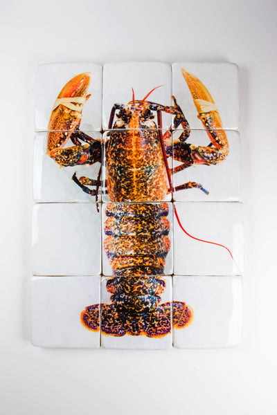 Yellow european lobster (80cm x 60cm)