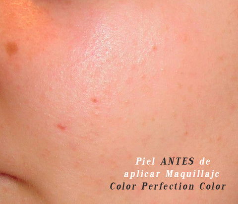 piel antes de aplicar el maquillaje Color Perfection Color