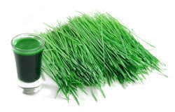 Organic Kamut Wheatgrass Blend helps to normalize your pH