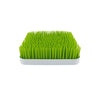 Boon Grass Drying Rack for Bottles - PeppyParents.com  - 1
