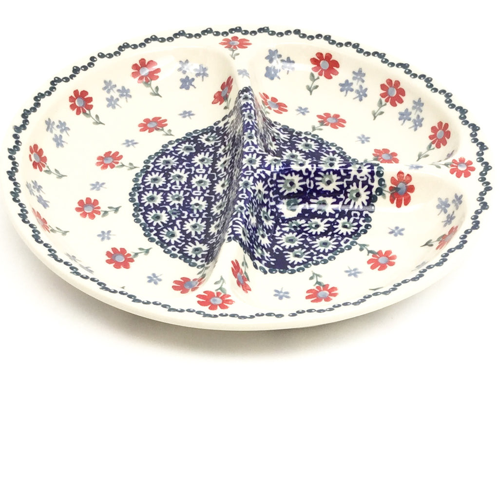 Divided Plate in Blue & Red