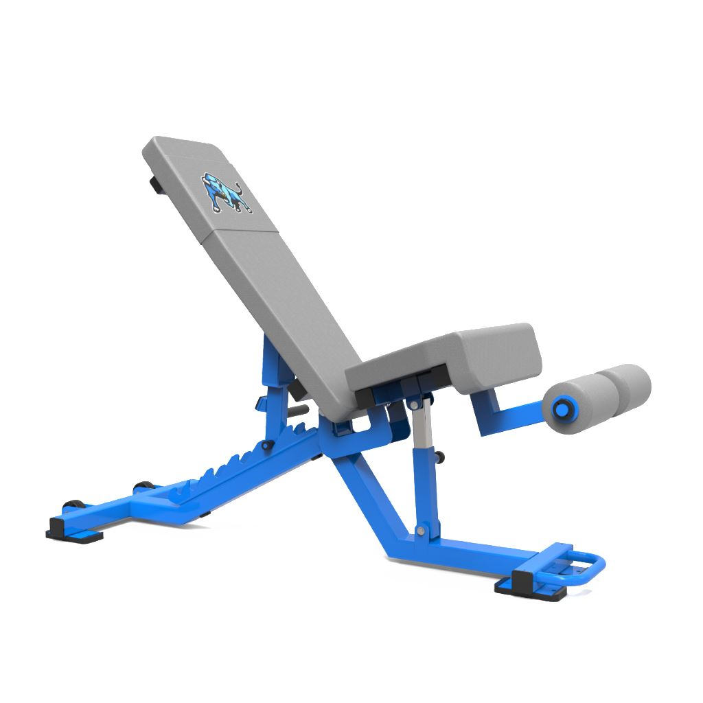 Dynamic Edge FID Bench - Fitness Trendz USA