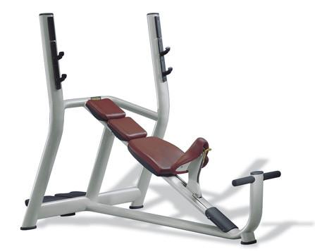 TechnoGym Selection Olympic Incline Bench - Fitness Trendz USA