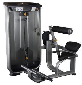 Torque Fitness M Series Back Extension - Fitness Trendz USA