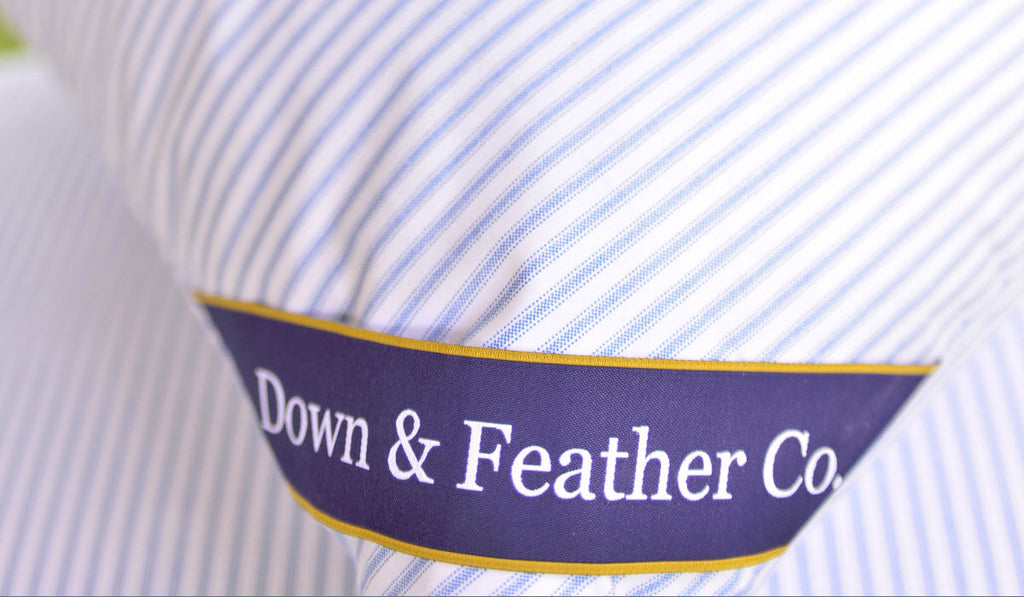 Down vs Feather: The showdown