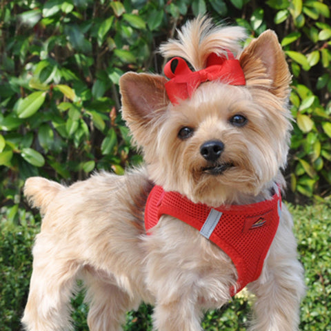 Choke Free Dog Harness in Red