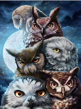 Owl Be Watching You Diamond Painting Kit
