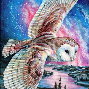 Soaring Skies Diamond Painting Kit