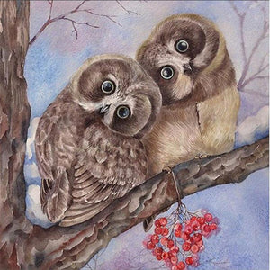 Whoooo Are You? Diamond Painting Kit